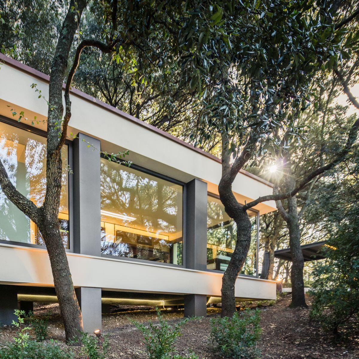 Casa nel Bosco suspended on pillars