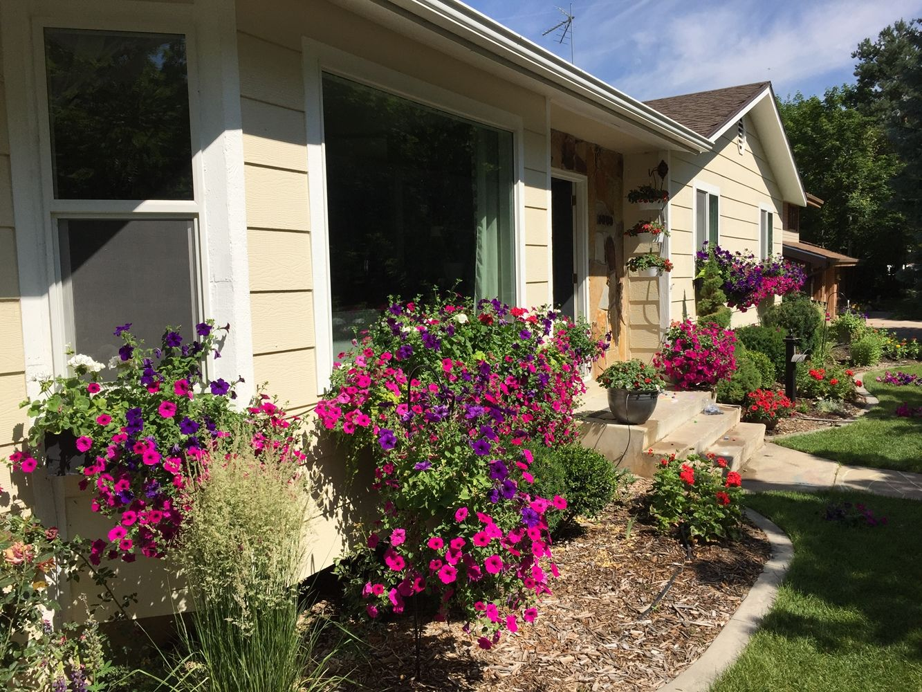 DIY Flower Bed Starts- decorate with flowers the exterior