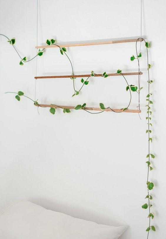 DIY nature hanging
