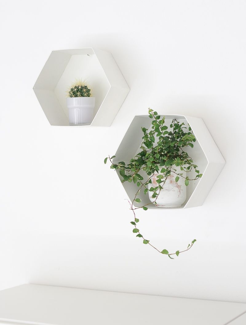Hexagon Plant Shelves Angle