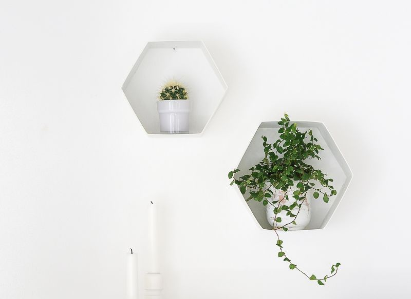 Hexagon Plant Shelves Project