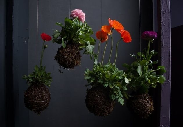 Magical string planter
