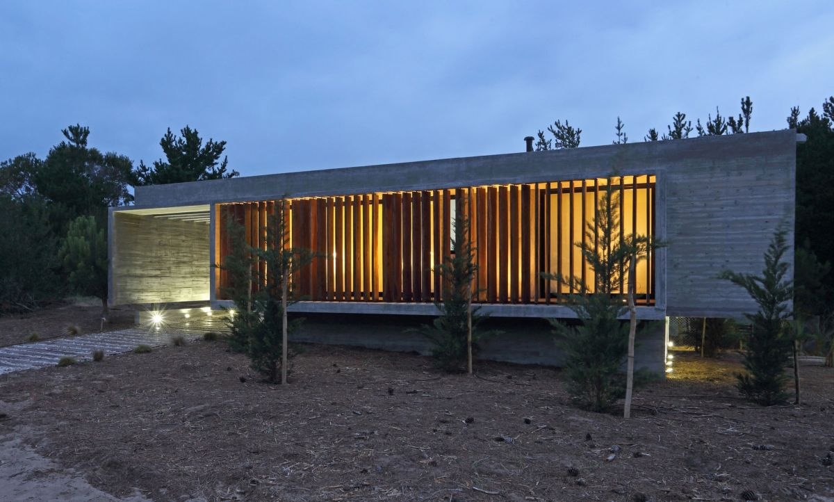 S & S House in Argentina wood panel facade