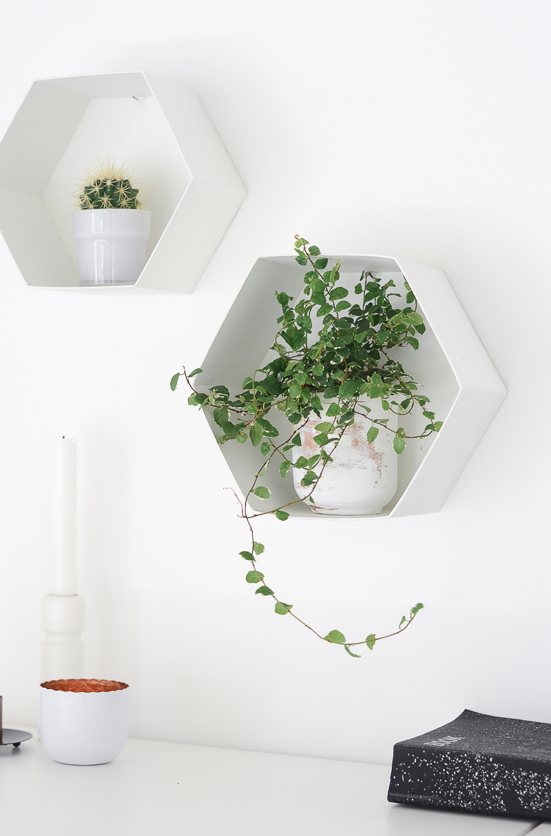 Wall Hexagon Plant Shelves
