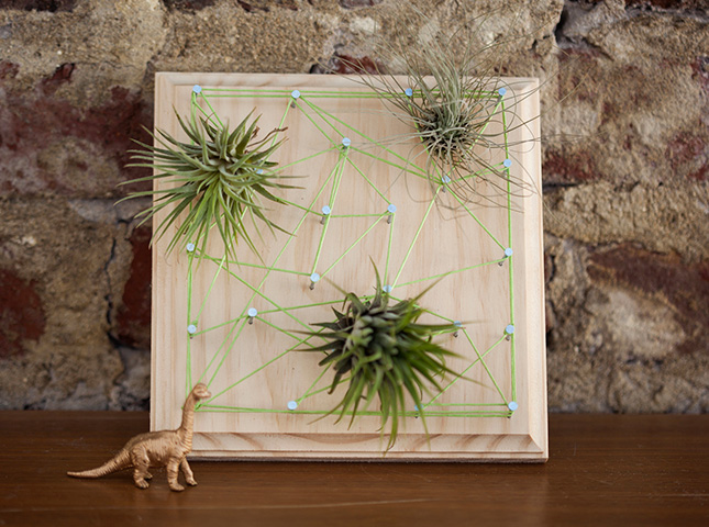Wall hanging string planter art