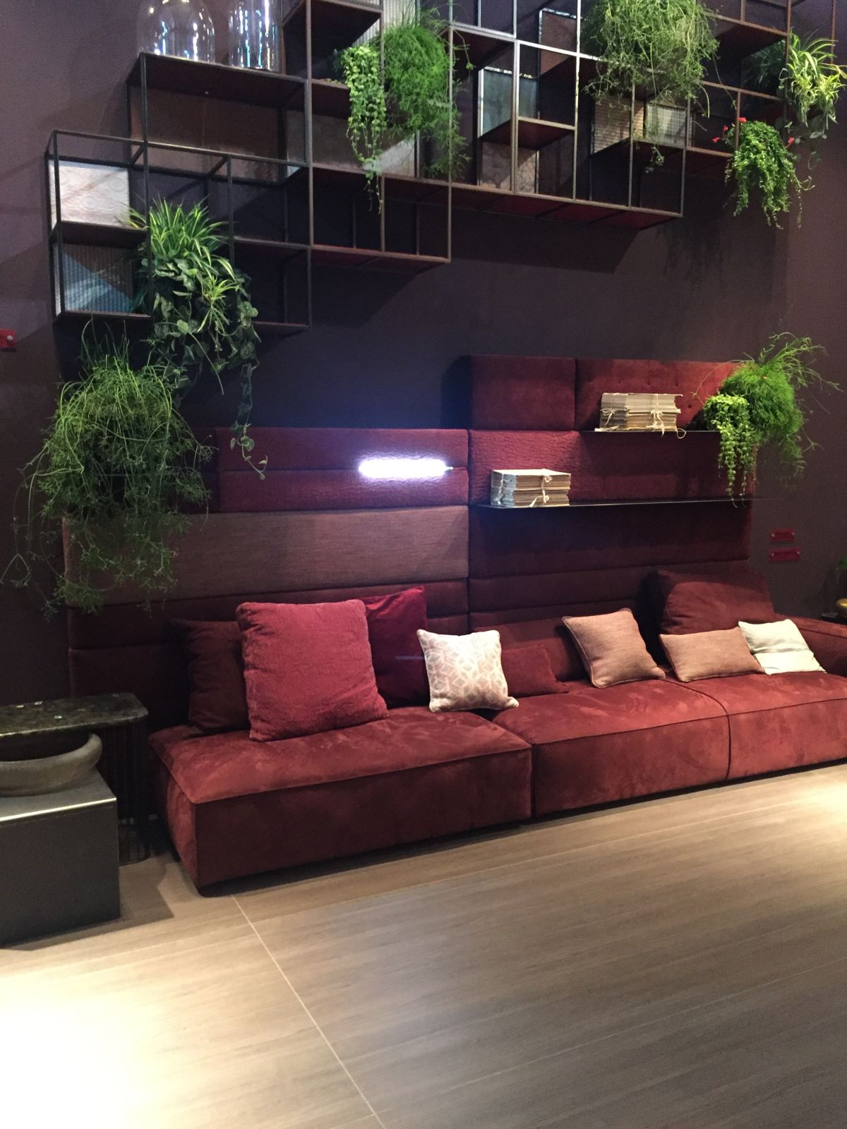 Wire shelves and decorated with plants above the sofa