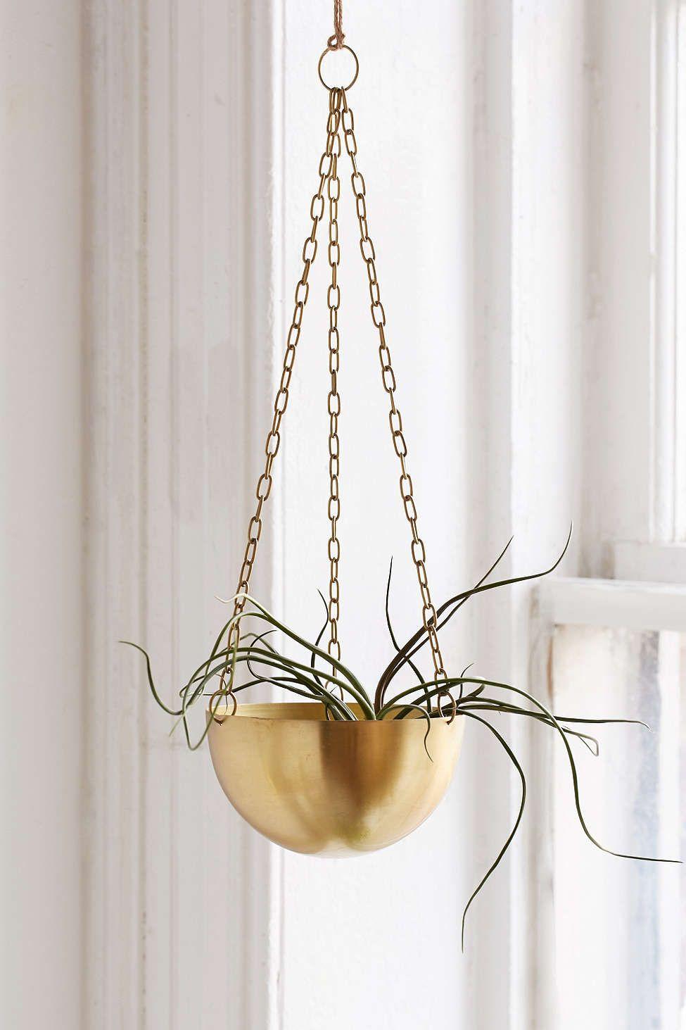 Bowl succulent planter