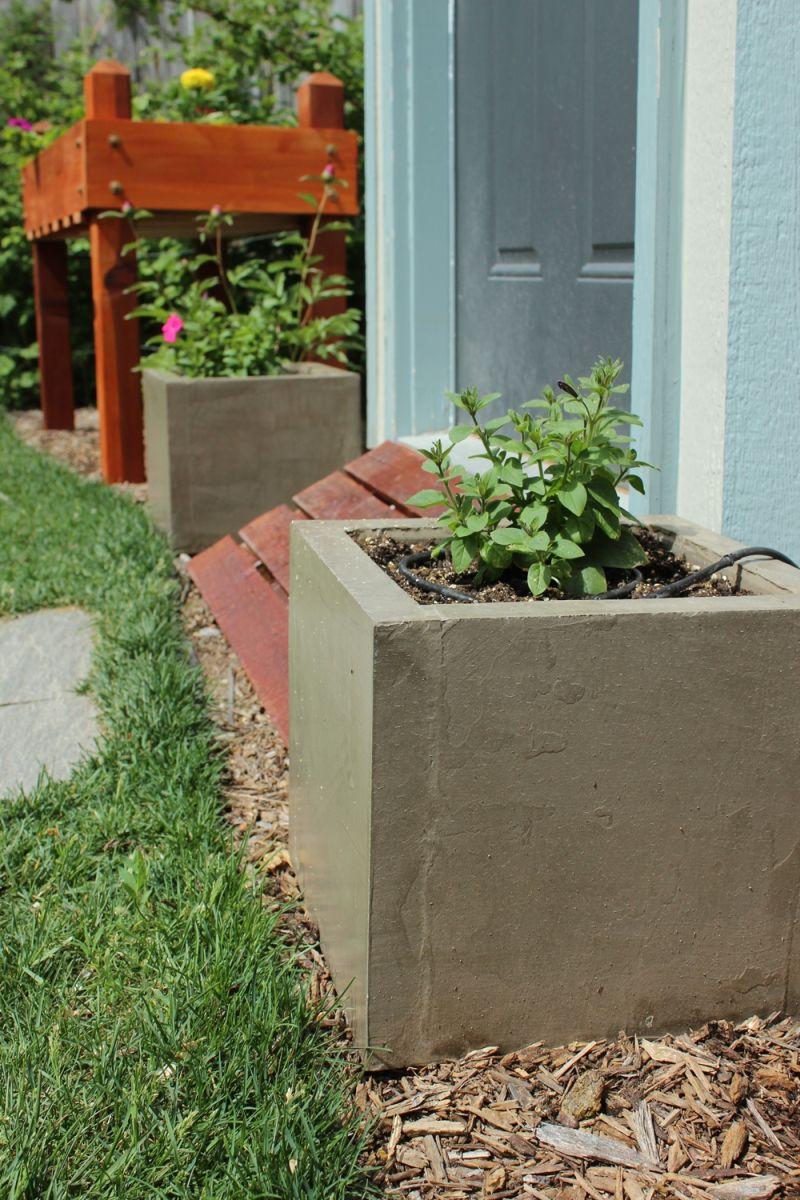 DIY Concrete Planters Project