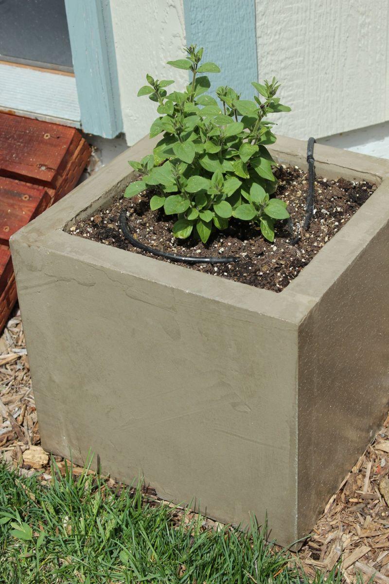 Diy Concrete Planters Water Source