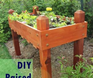 DIY Raised Planter Box – A Step-by-Step Building Guide