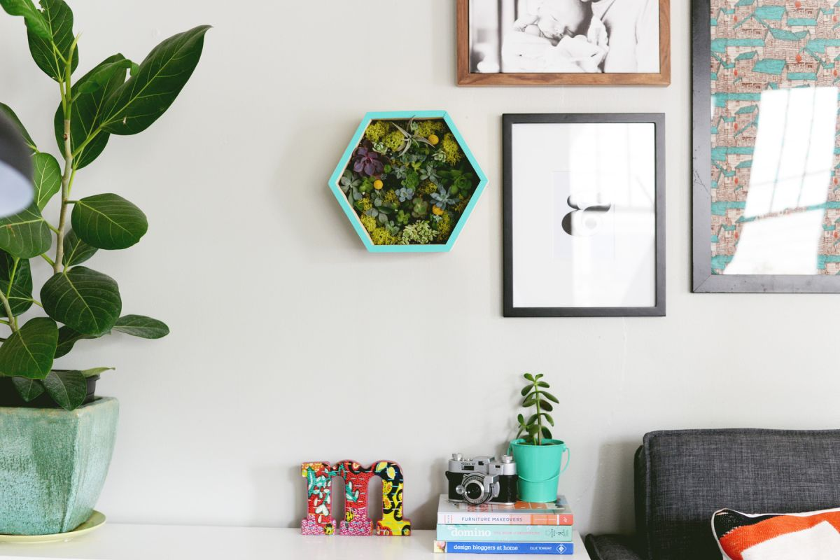 DIY Succulent Wall Planter Decorate