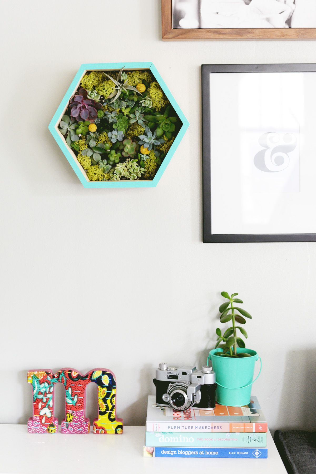 DIY Succulent Wall Planter Design