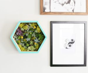 Modern DIY Succulent Wall Planter