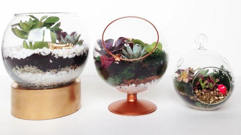 Globe terrarium DIY