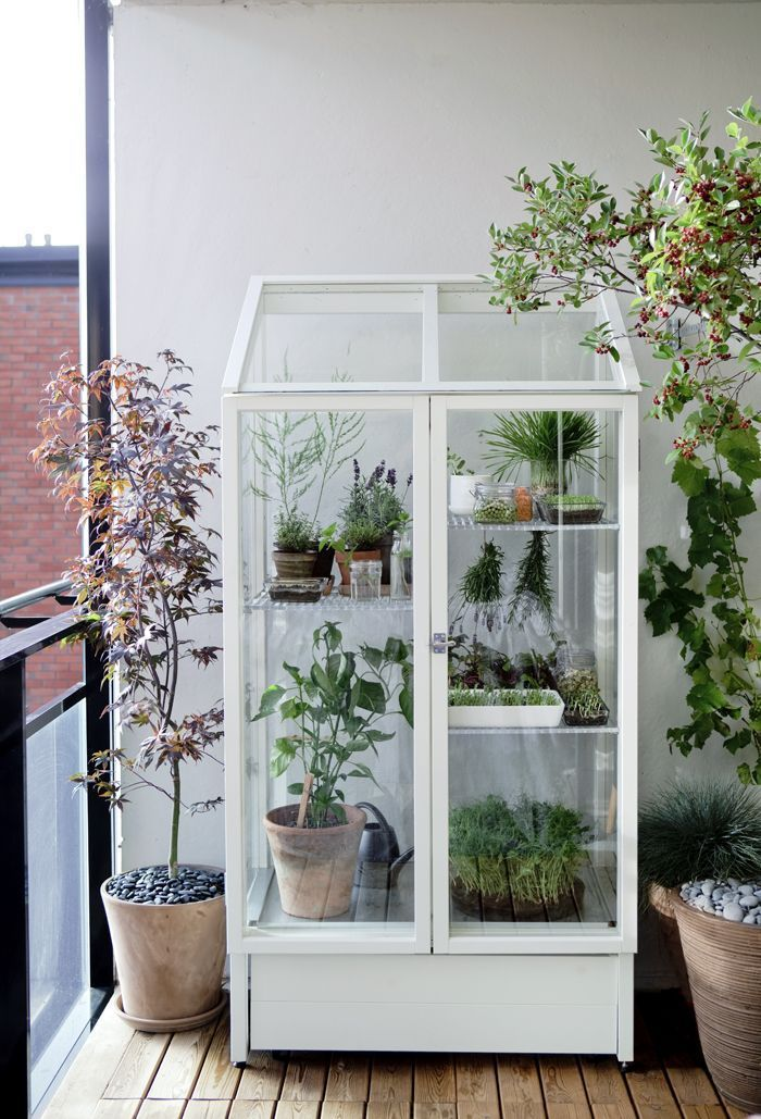 Greenhouse Balcony Design