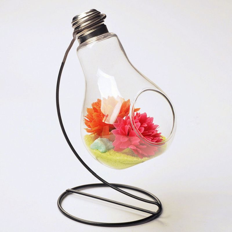Hanging light bulb turned into a terrarium