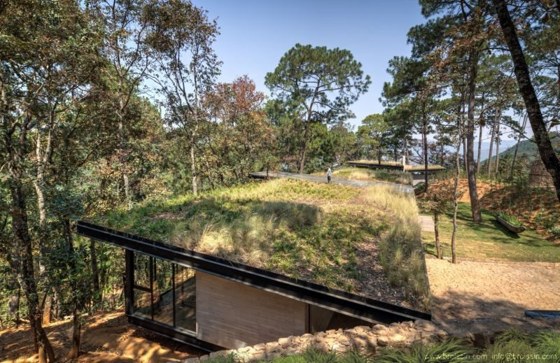 Green-Roofed House Inspired By The Land And The Views