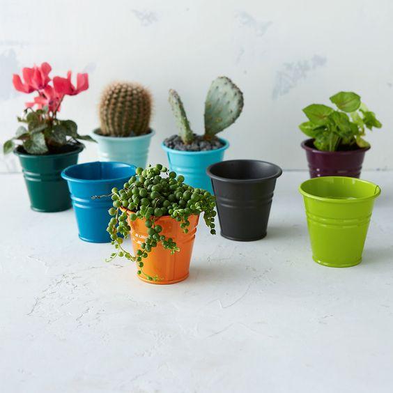 Mini bucket planter