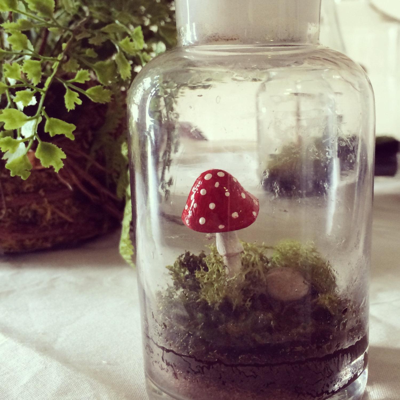 Mushroom vintage terrarium