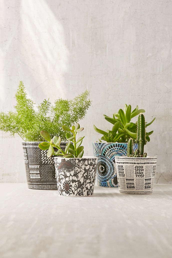 Patterned succulent planter