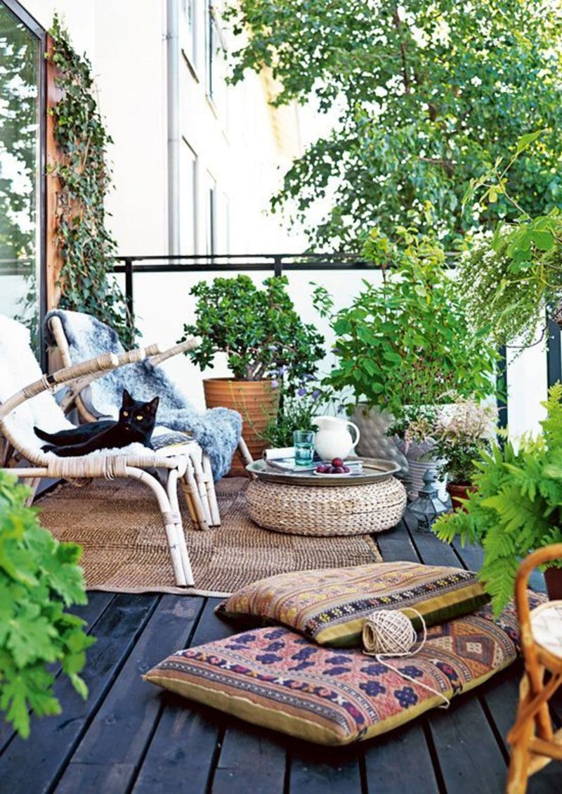 Plants for balcony design