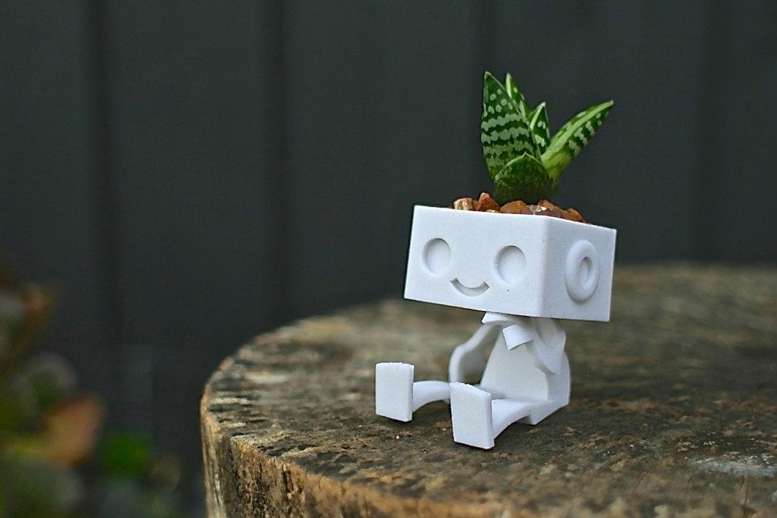 Robot succulent planter