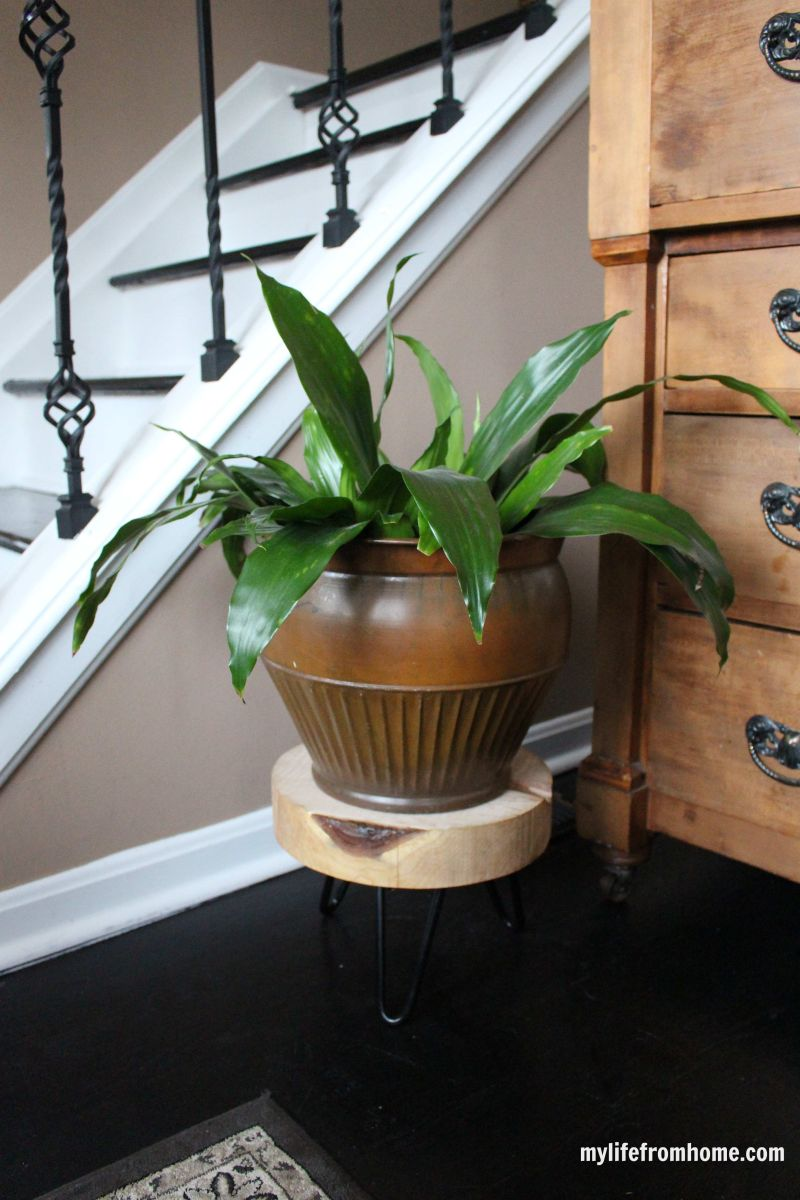 Sliced wood planter with hairpin legs