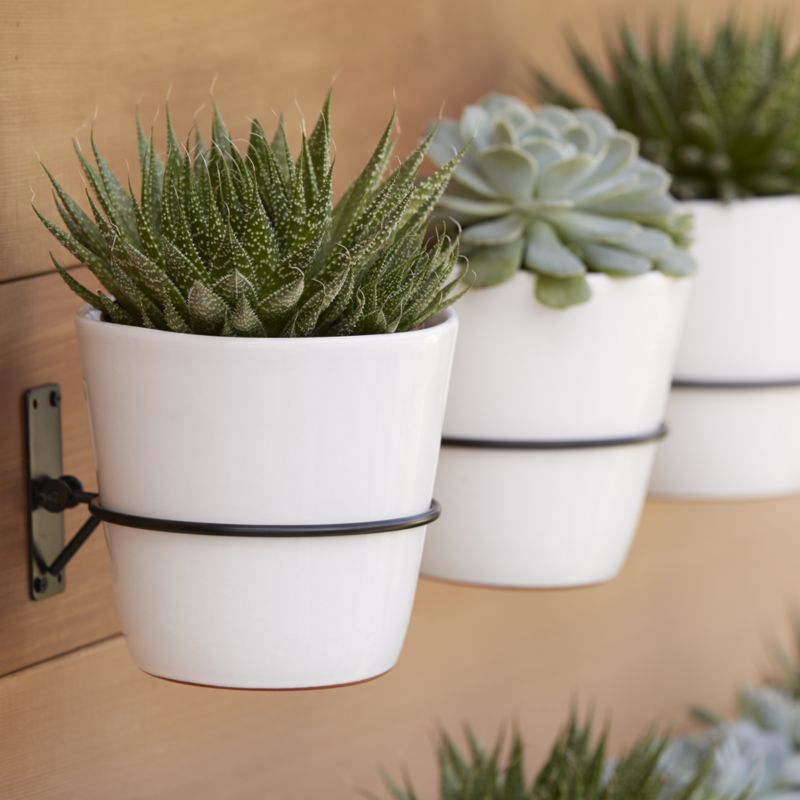 20 Pretty Pots To Refresh Your Succulents