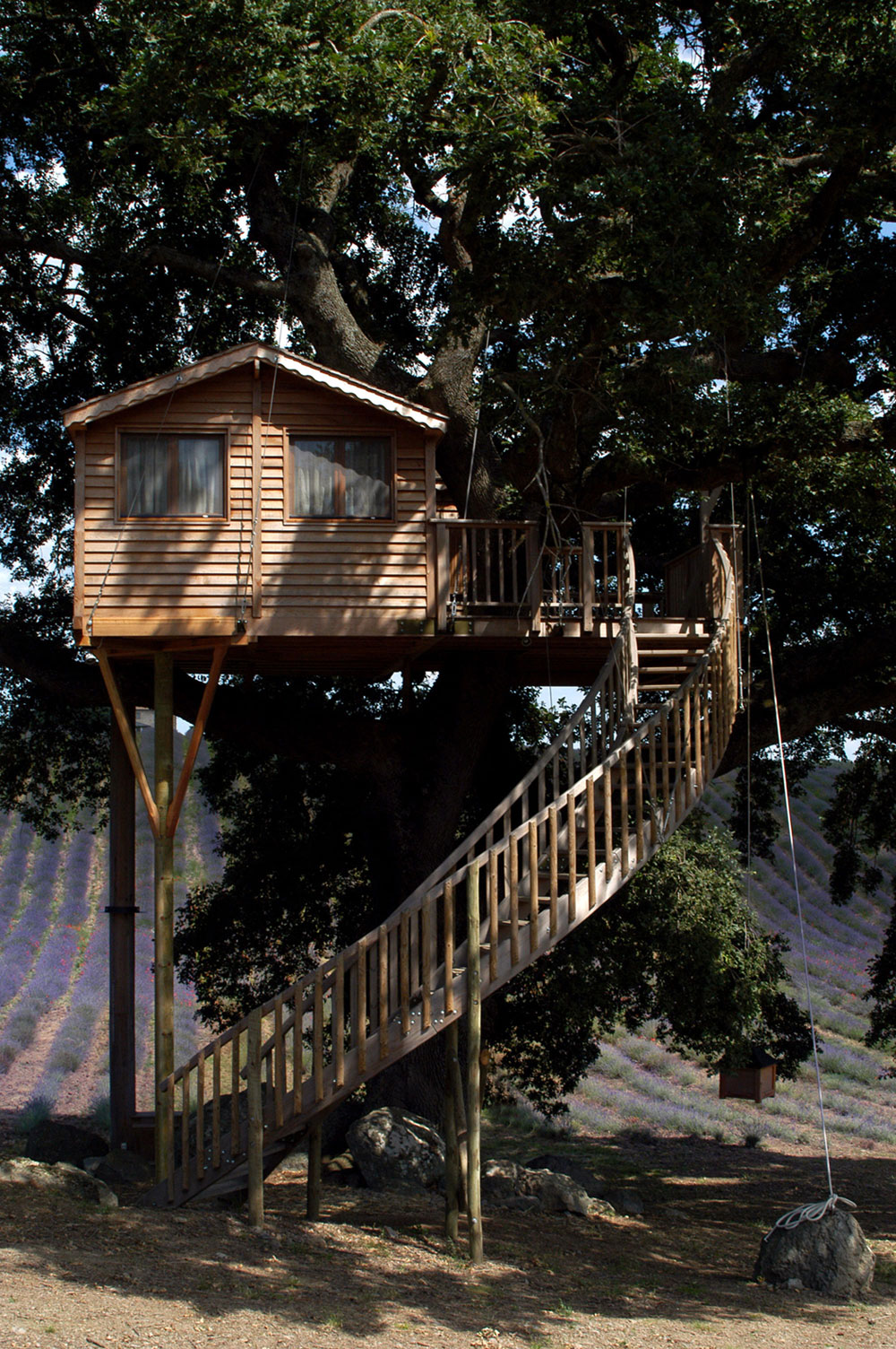 Suite Blue Treehouse And Staircase