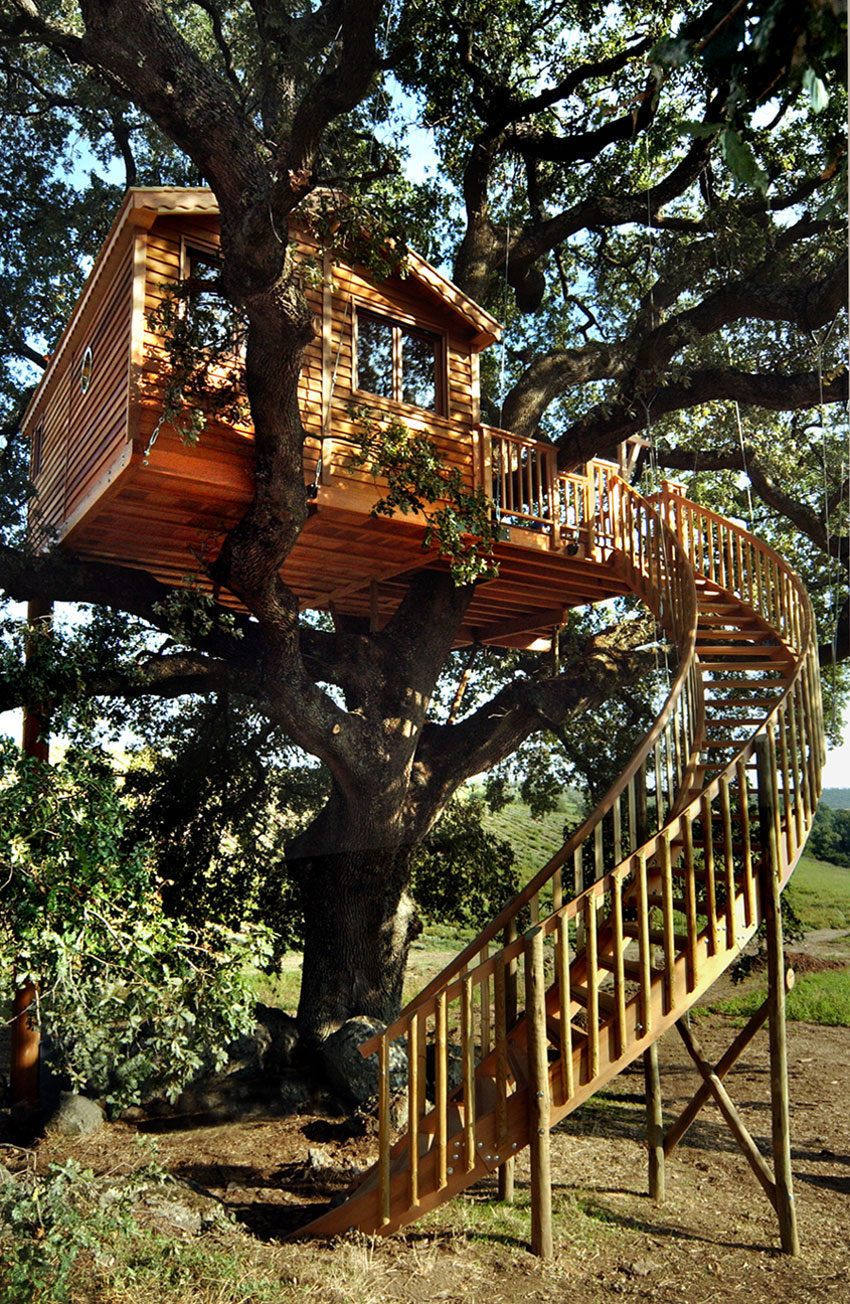 Suite Blue Treehouse Spiral Staircase