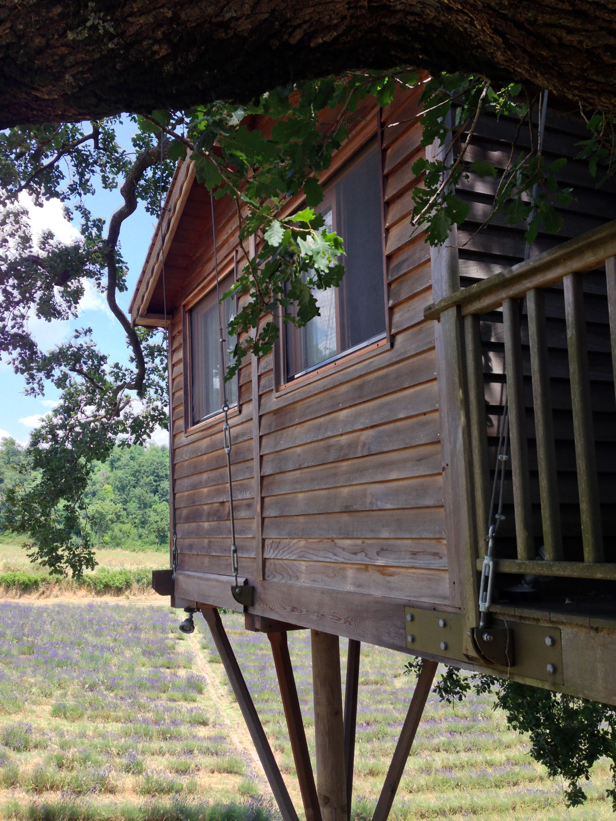 Suite Blue treehouse wood structure