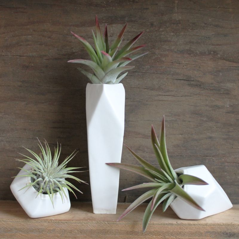 3 faceted porcelain air plants pots