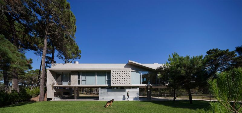 Alamos House front yard