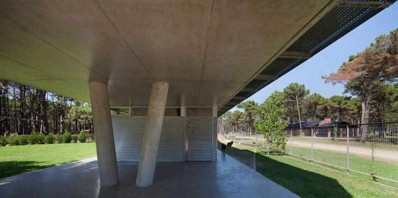 Alamos House ground floor columns