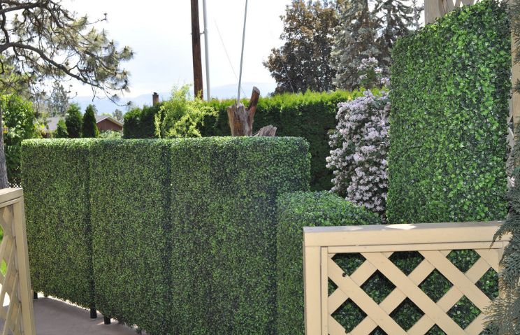 Artificial boxwood fence