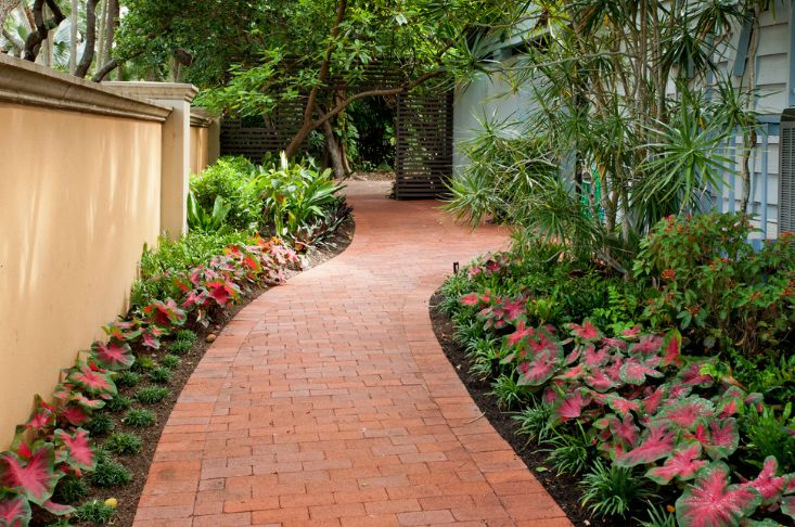 Brick pathway and flowers around
