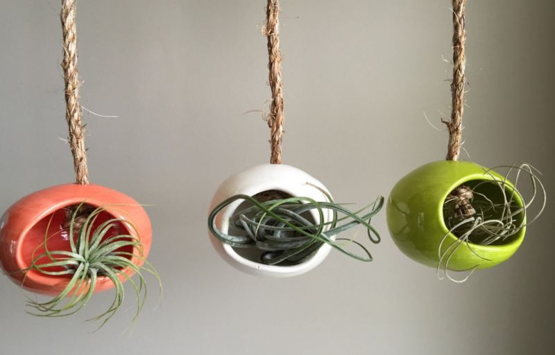 Colorful ceramic hanging air plants pots