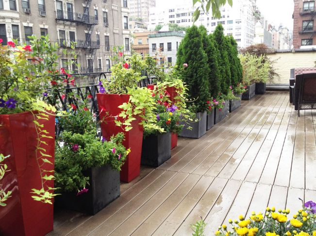 Find a combination of colors that you like and use it to make a deck stand out