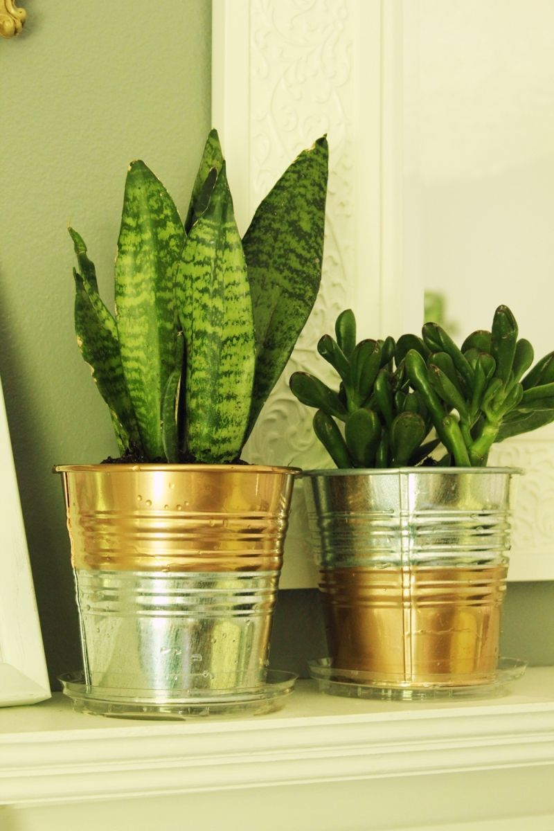 Ordinaire DIY Copper Planter Pot   Gold Accents