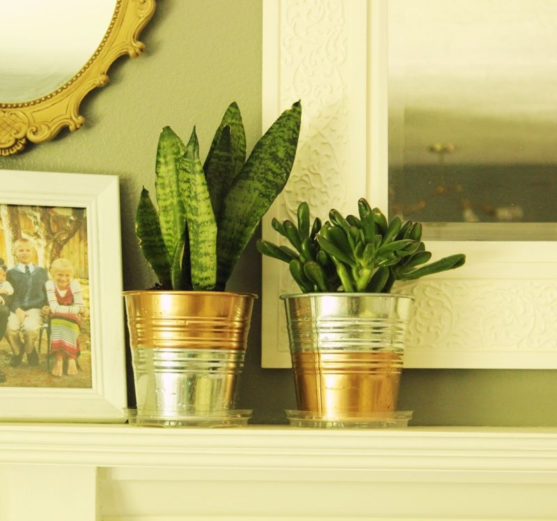 DIY Copper Planter Pot- succulent plants