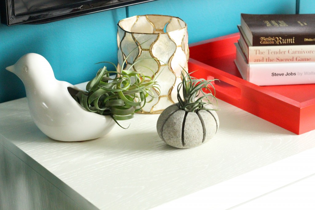 Decorate the countertop with airplants