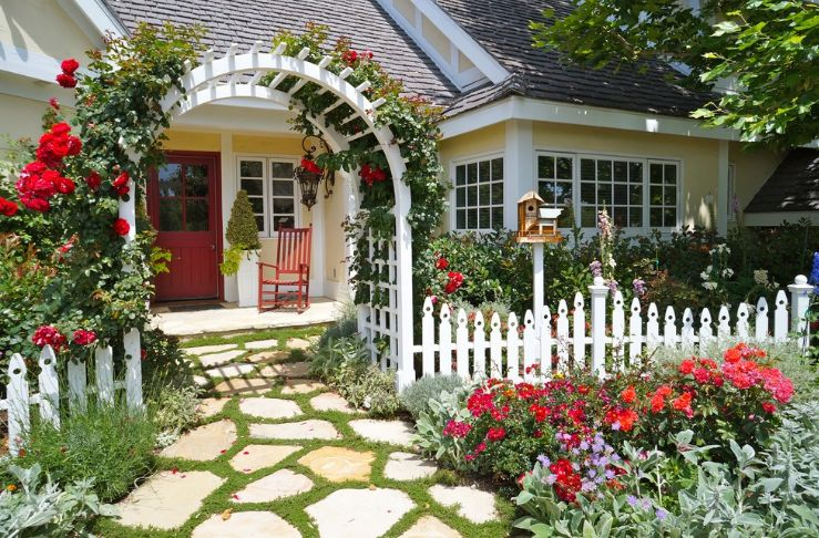 Fancy Grape Arbor and Plants