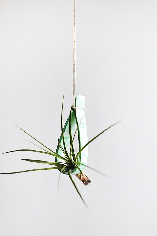 Hanging clay plant holder