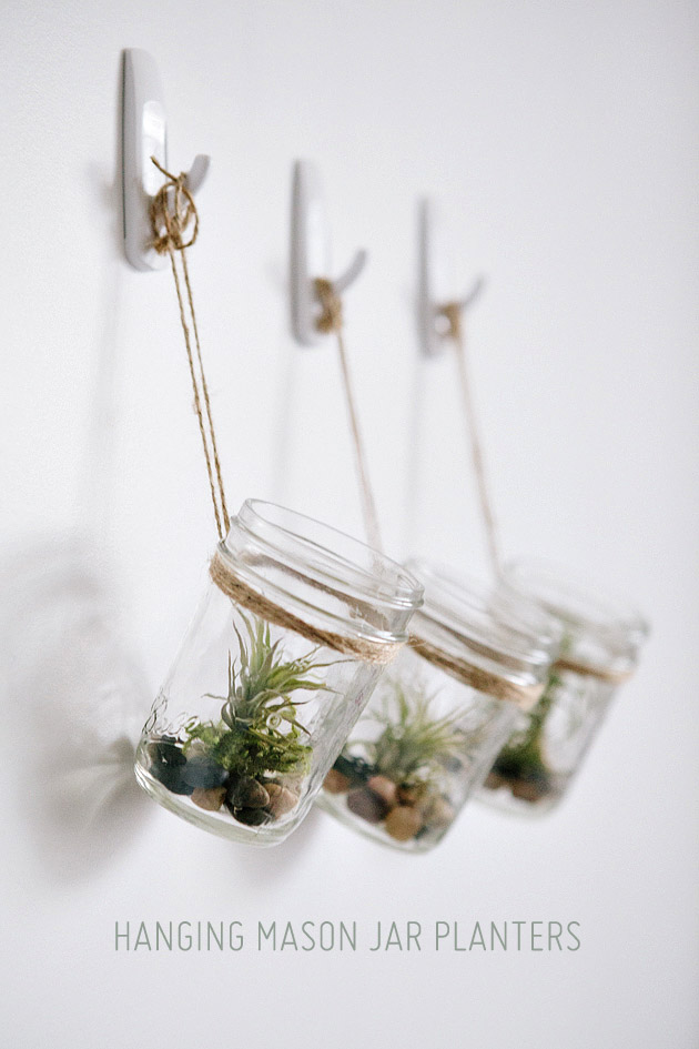 Hanging mason jar planter with air plants