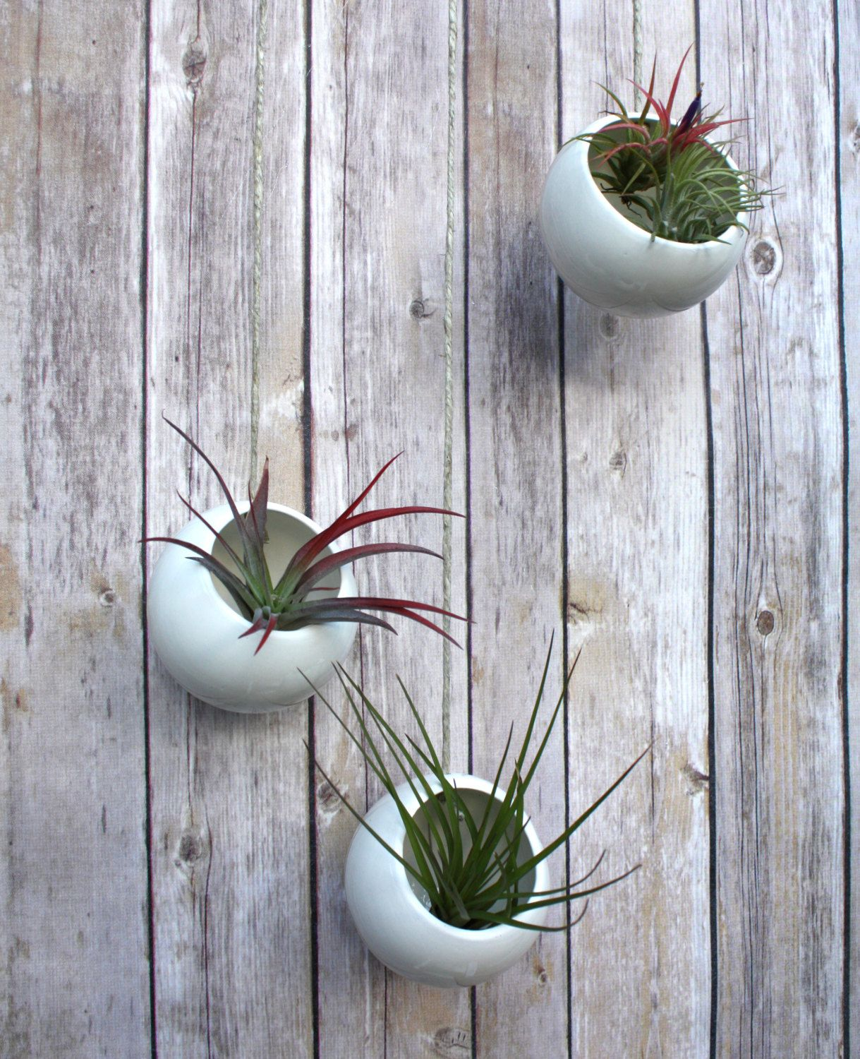Hanging planters set of three