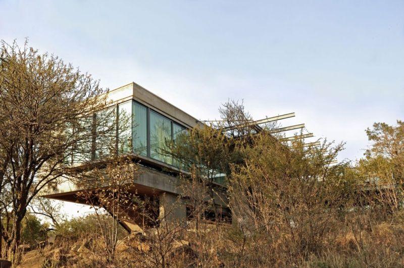 House Gauche vegetation on site