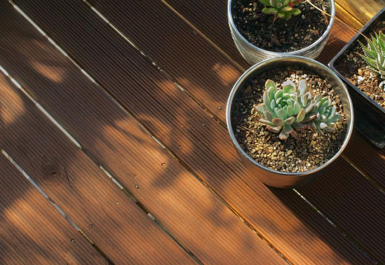 How To Strip and Stain Your Deck - Succulents