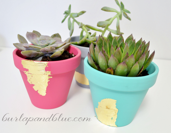 Mod podged planters with gold foil