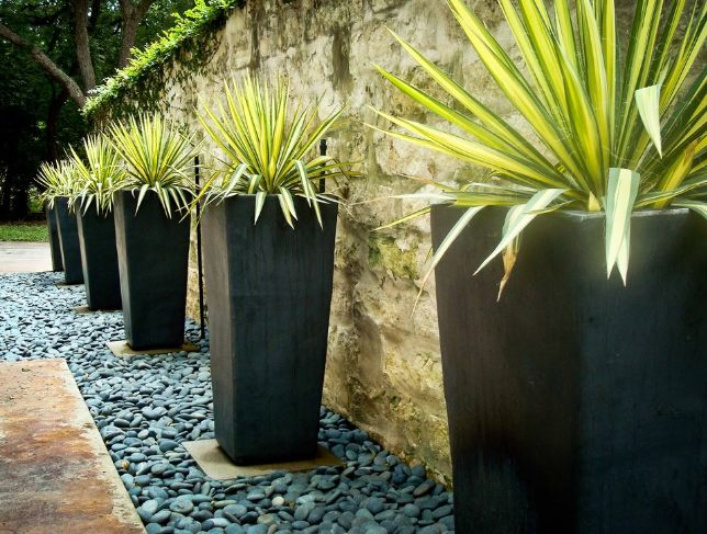 Oversized planters look nice in combination with spider plants or small trees