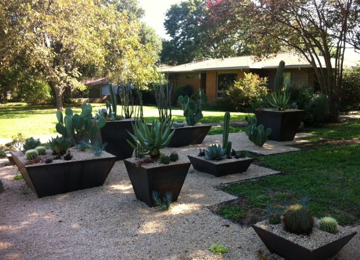 Place metal container in shaded areas and use for drought-tolerant plant types